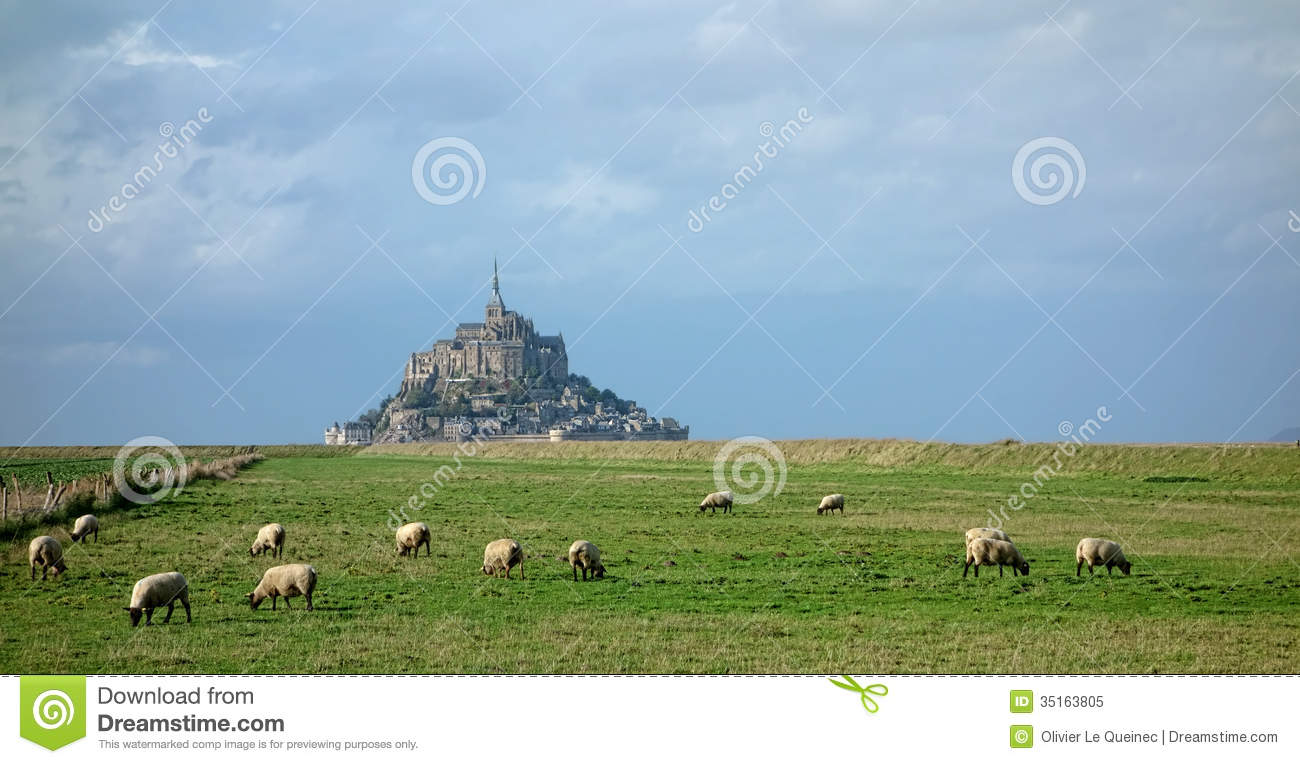 Flock Of Sheep At Mont Saint Michel In France Royalty Free Stock.