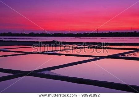 Z.H.CHEN's Portfolio on Shutterstock.
