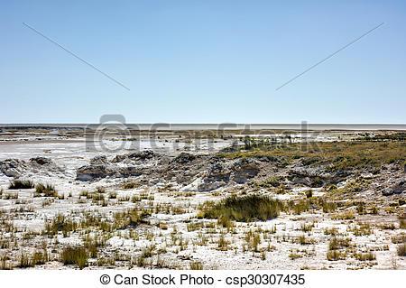 Stock Photos of Etosha Salt Pan.