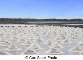 Clipart of Salt pans.