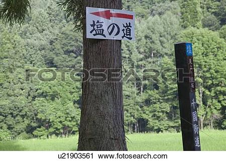 Stock Photography of Road Sign of Salt Road, Chicano Kayo.