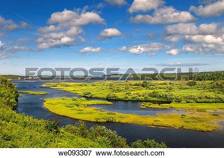 Picture of Salt marsh on North Aspy River at North Harbour Asby.