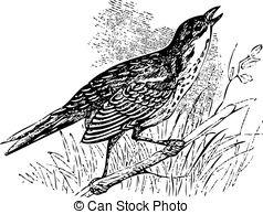 Saltmarsh Vector Clipart EPS Images. 4 Saltmarsh clip art vector.