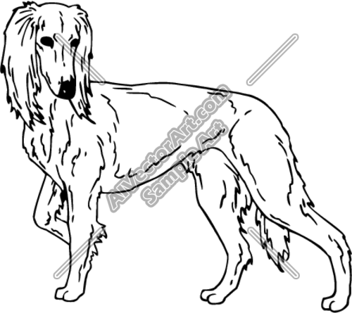 SALUKI Clipart and Vectorart: Animals.