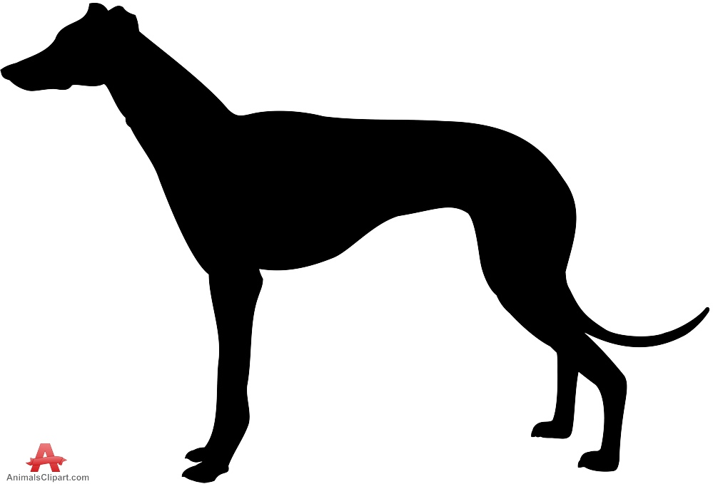 Saluki Dog Silhouette.
