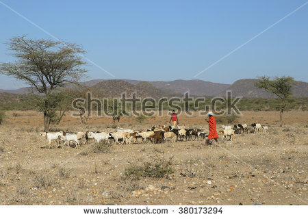 Samburu Stock Photos, Royalty.