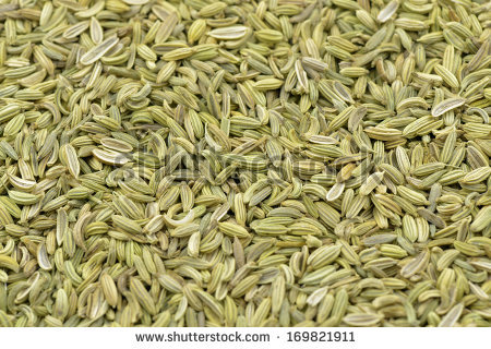 Fennel seeds free stock photos download (442 Free stock photos.