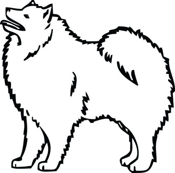 Samoyed Dog Breed Graphic Art For Custom Pet Lovers Gifts.