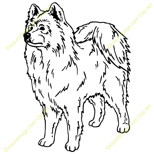 Gallery For > Samoyed Dog Clipart.