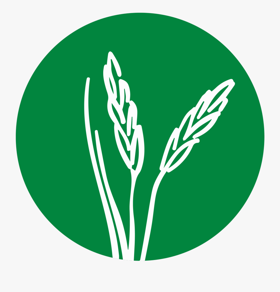 Career Pathway Logos Agriculture & Natural Resources.