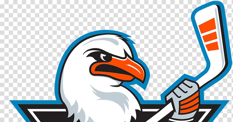 San Diego Gulls transparent background PNG cliparts free.
