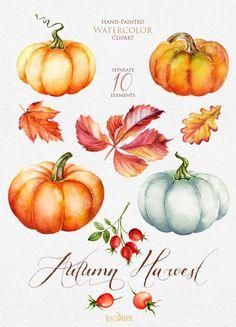 Watercolor Autumn Leaves Clipart.