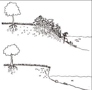 Erosion garden clipart.