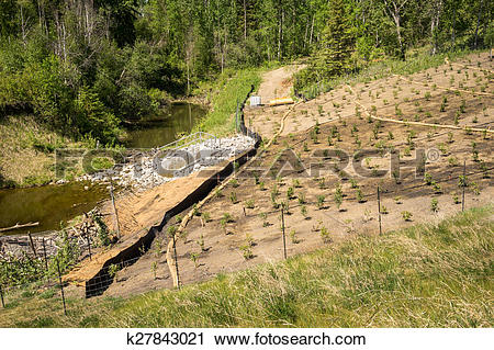 Stock Photography of Erosion control on a slope k27843021.