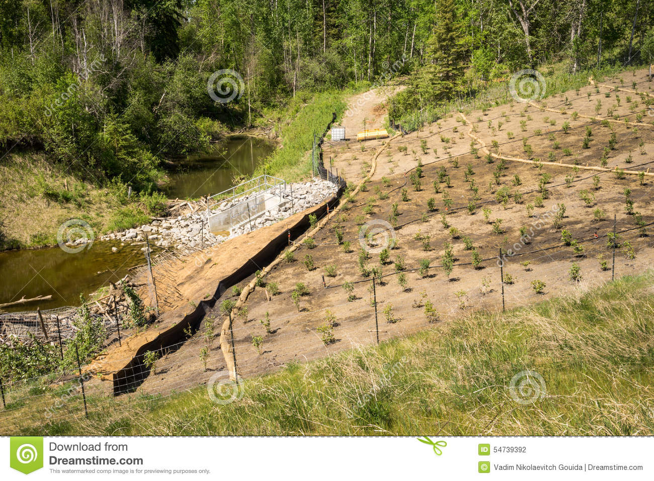 Erosion Control On A Slope Landscape Project Stock Photo.