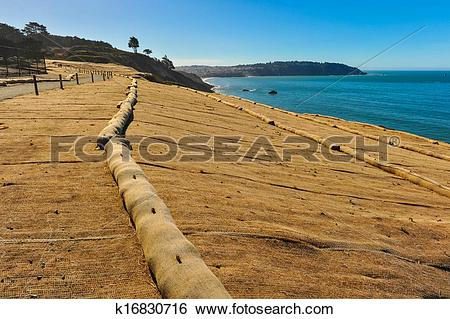 Stock Images of Walking trail next to ocean with erosion control.