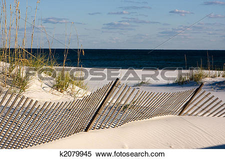 Stock Image of Sand Fence Along The Gulf Coast, Florida k2079945.