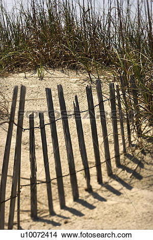 Stock Photo of Weathered fence on sand dune on Bald Head Island.