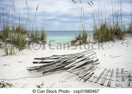 Stock Image of Sand Fence and Sea Oats at Florida Beach.