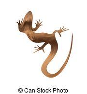 Sand lizard Clipart Vector Graphics. 61 Sand lizard EPS clip art.