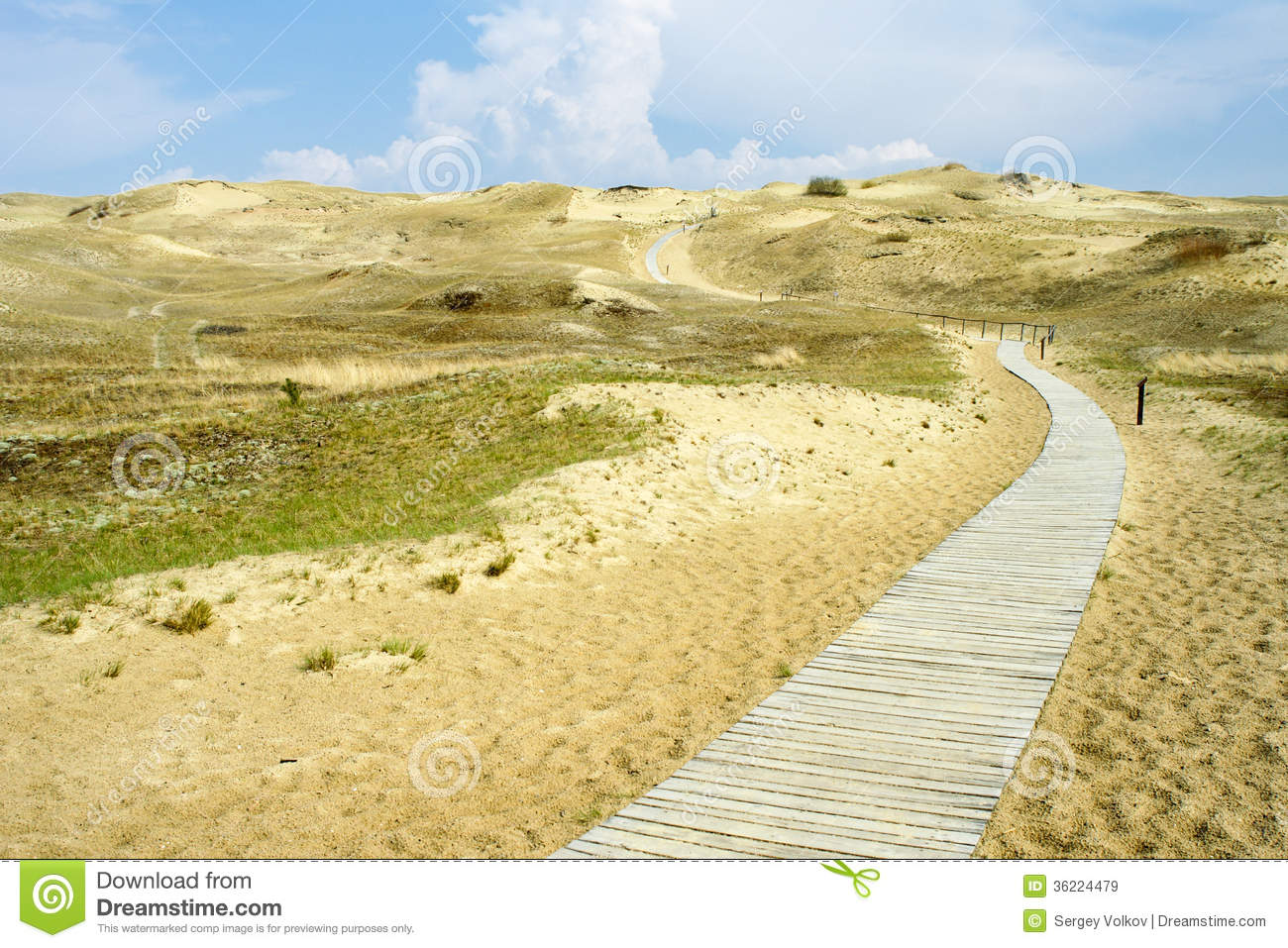 Path Through The Dunes Royalty Free Stock Images.
