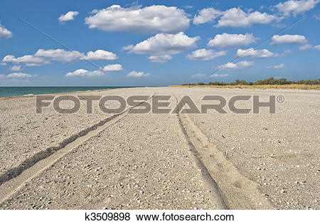 Pictures of Trace left the car on sand.