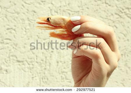 Orange Sand Shrimp Stock Photos, Images, & Pictures.