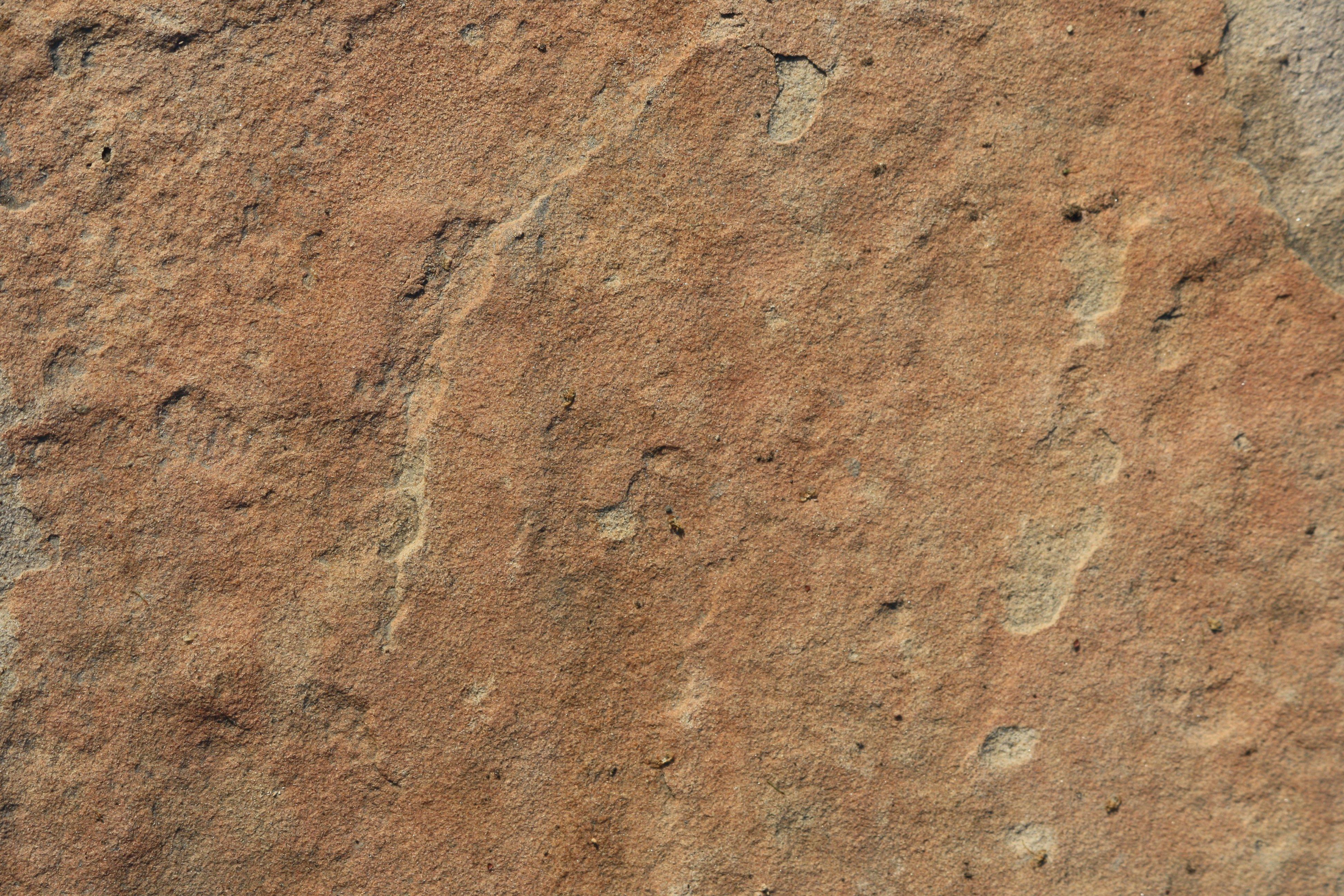 Sandstone Rock Texture Picture.