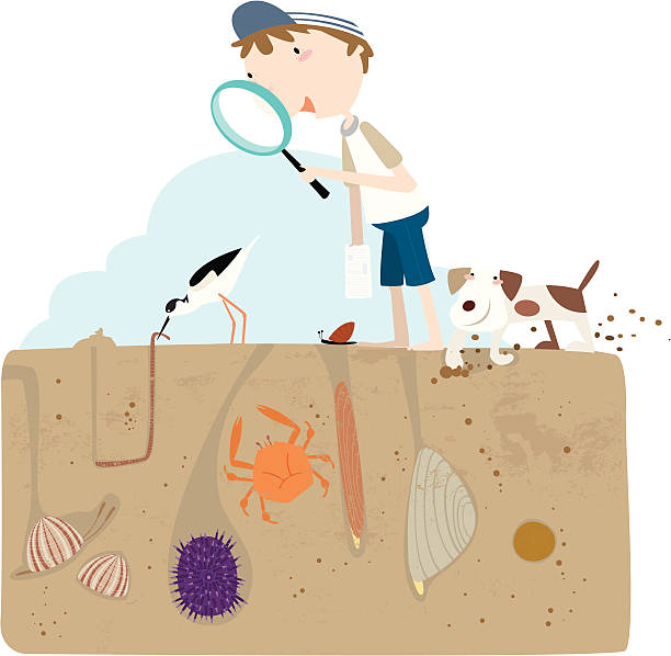 Sand Worm Clip Art, Vector Images & Illustrations.