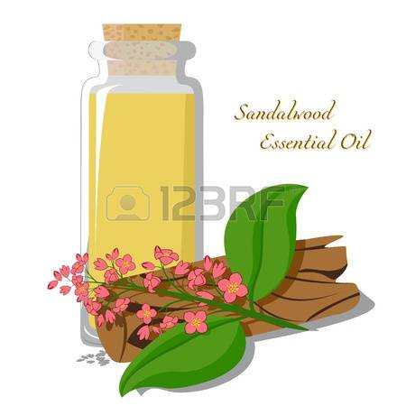 138 Sandalwood Stock Illustrations, Cliparts And Royalty Free.