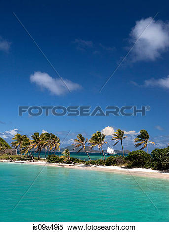 Stock Image of Palm trees on sandbar in tropical water is09a49i5.