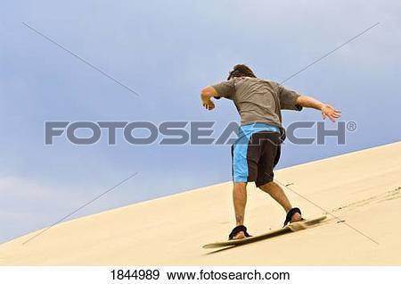 Stock Photograph of Sandboarding, Honeyman State Park, Oregon, USA.