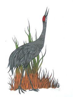 Sandhill crane clipart.