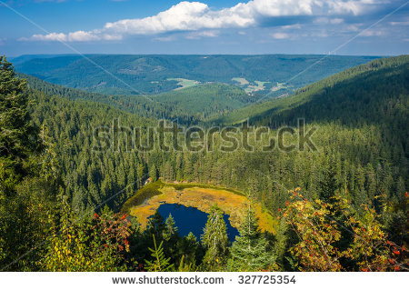 Lake Mummelsee Mountain Hotel Seebach Black Stock Photo 343955111.