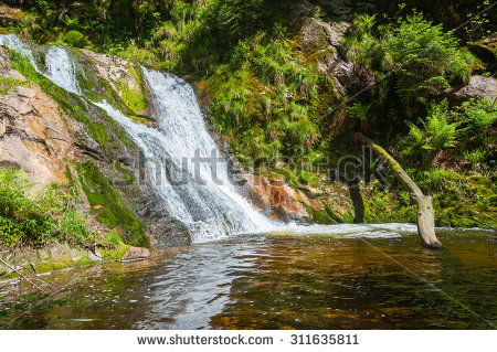 Black Brook Stock Photos, Images, & Pictures.