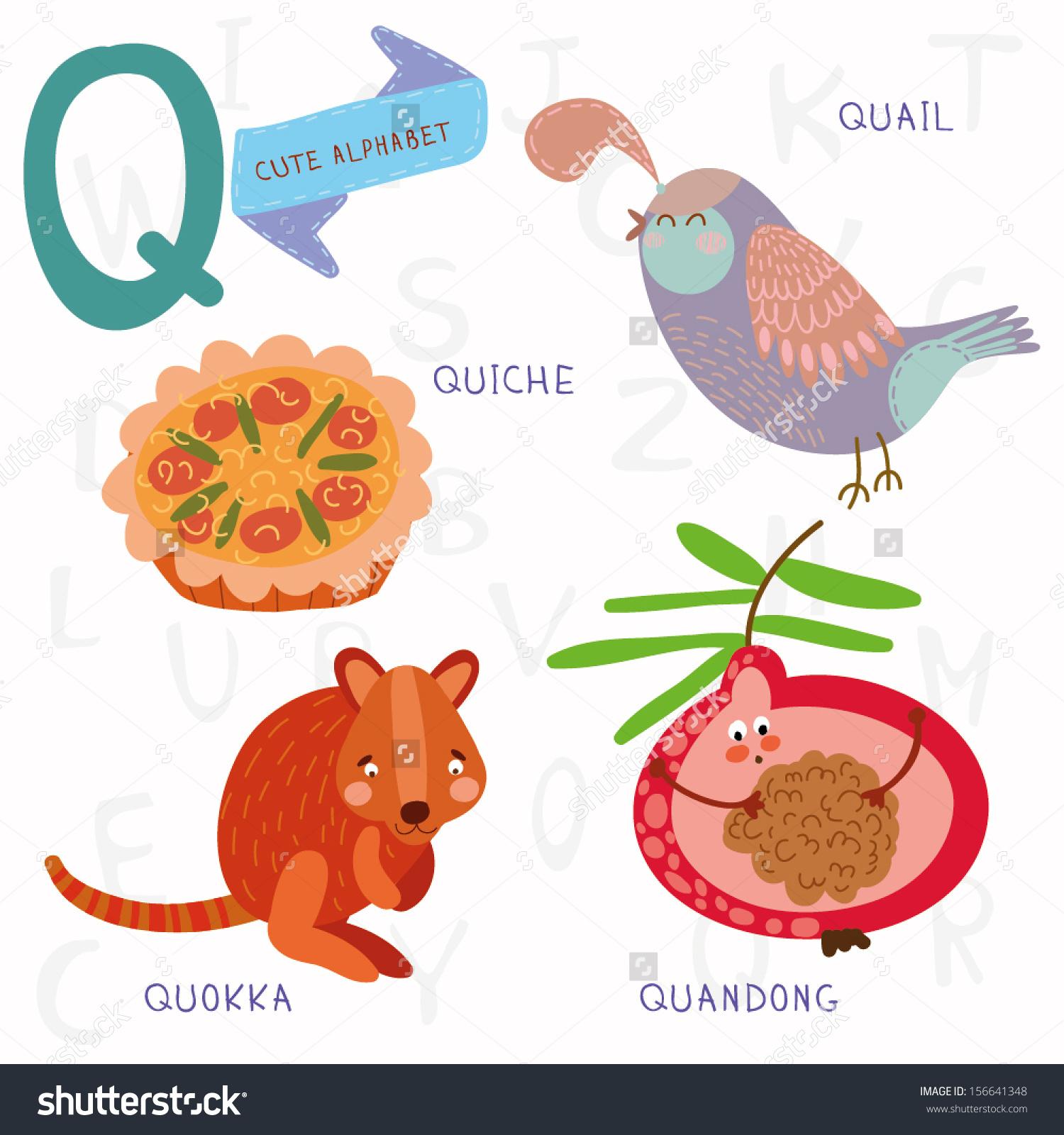 Very Cute Alphabet Q Letter Quokkaquichequandongquail Stock Vector.