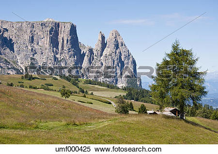 Stock Image of Italy, Alpine meadow towards Schlern and Santner.