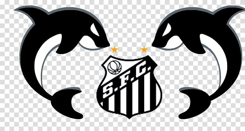 Santos FC CT Rei Pelé Esporte Clube Vitória Meninos da Vila.