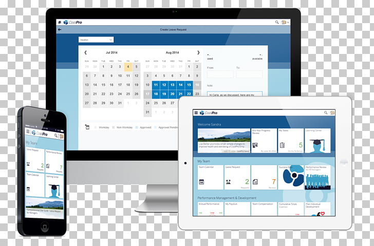 SAP Ariba Fieldglass Computer Software SAP NetWeaver Portal.