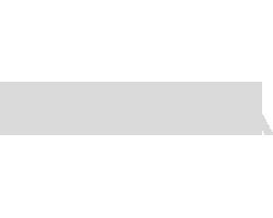 SAP Ariba grey logo.