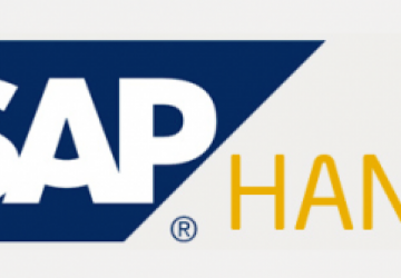 Five Reasons to Love SAP HANA.