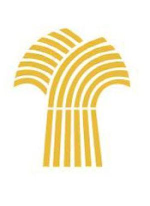 Sask. NDP slams government over logo.