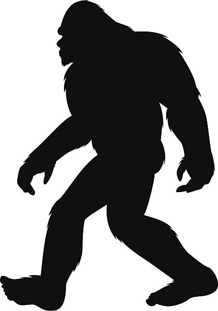 Foot clipart bigfoot.