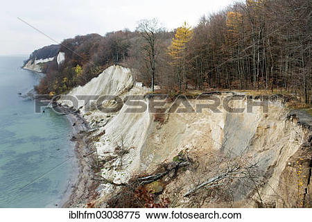 "Stock Image of ""Chalk cliffs with beech trees in autumn."