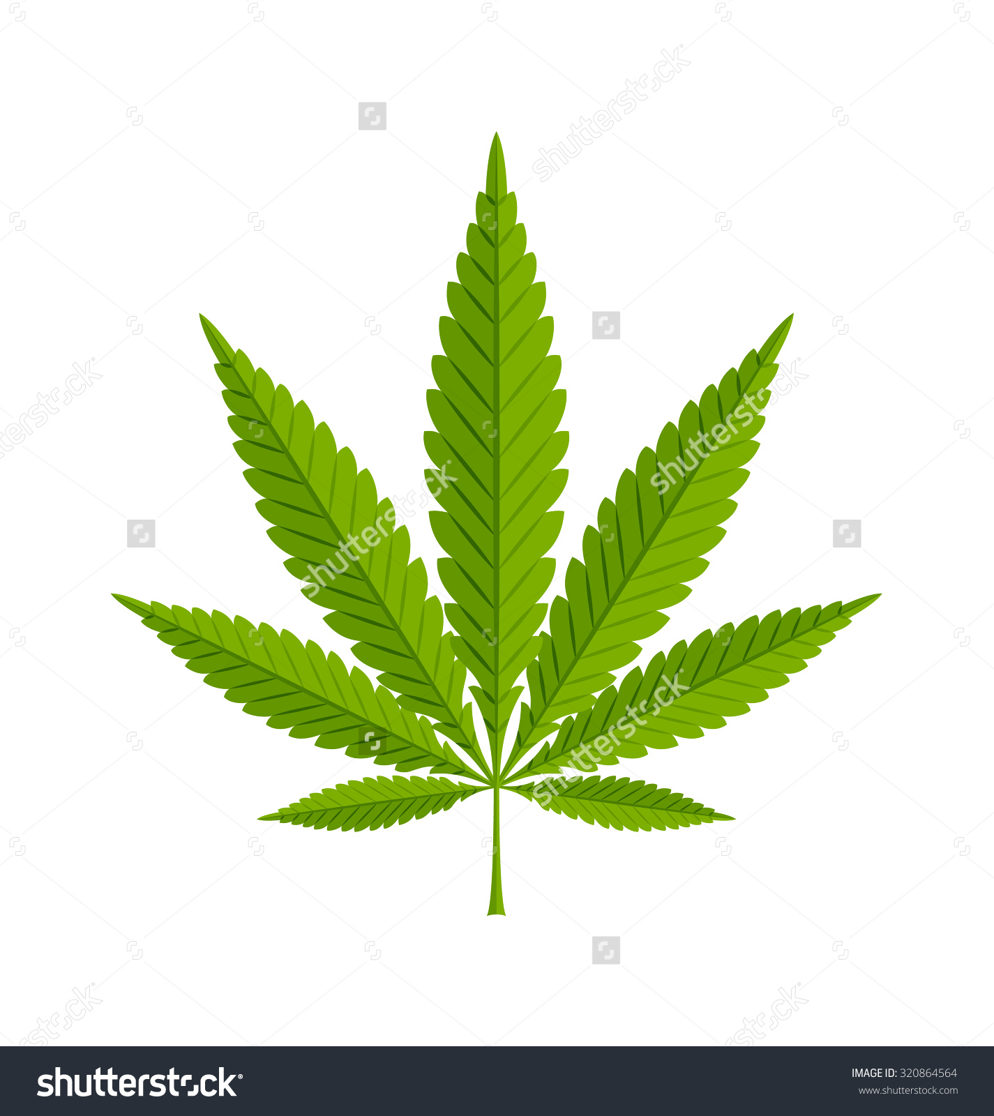 Marijuana Hemp Cannabis Sativa Cannabis Indica Stock Vector.