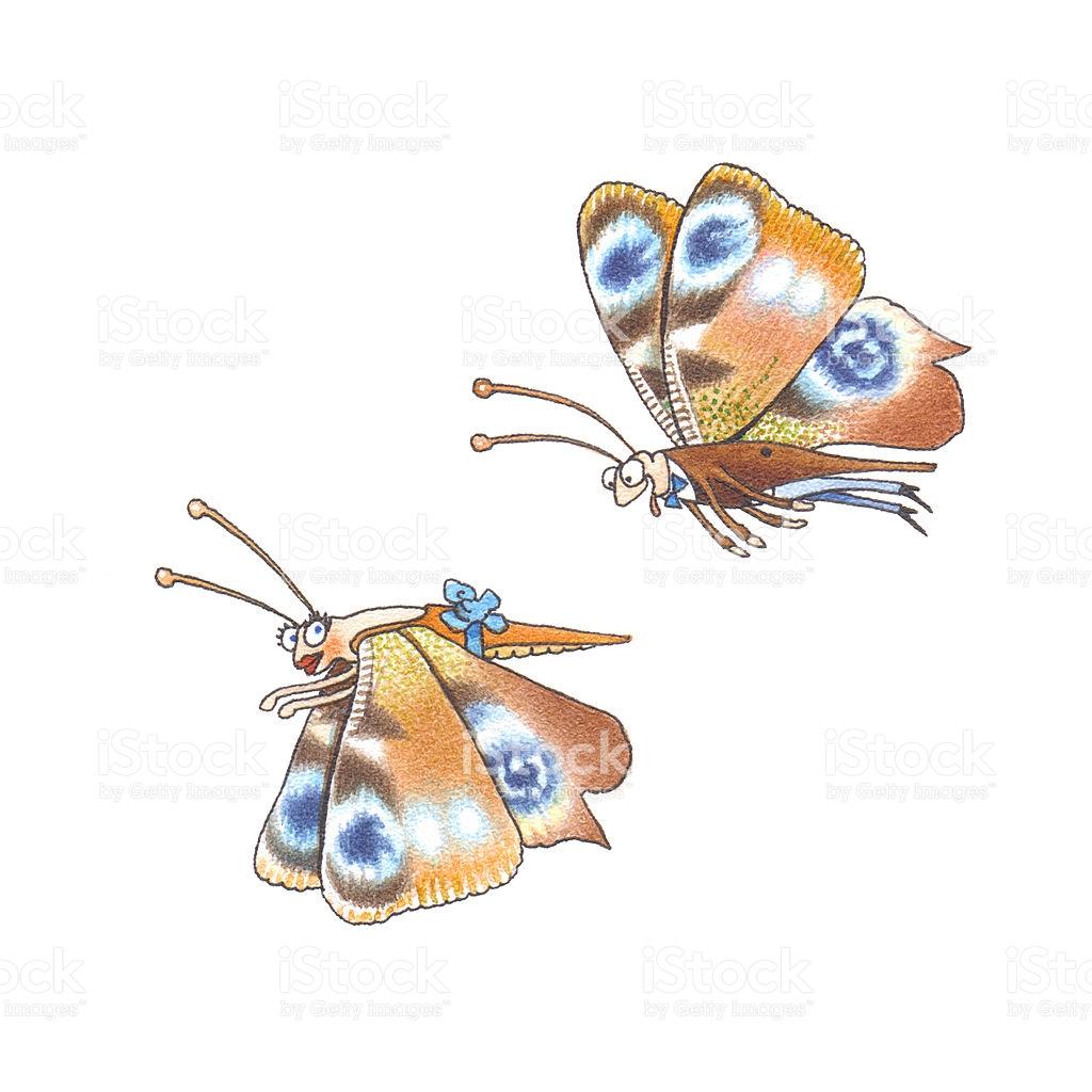 Saturniidae stock vector art 149110233.
