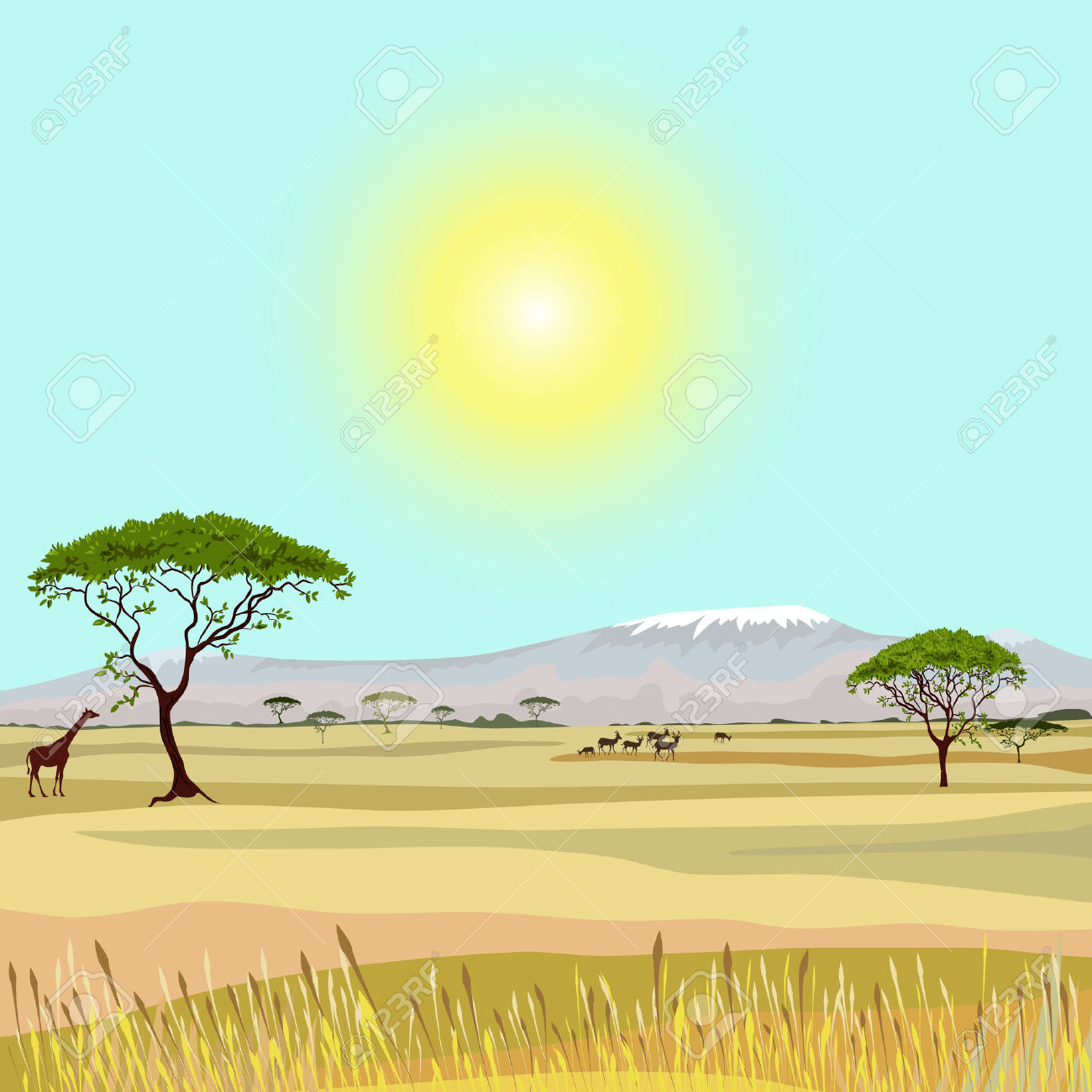 11,138 Savanna Stock Vector Illustration And Royalty Free Savanna.