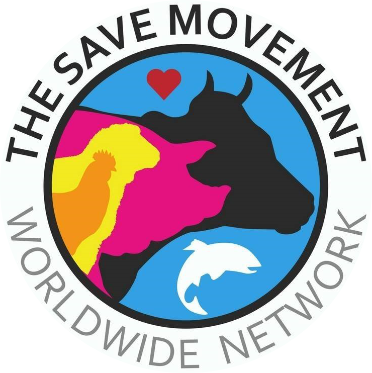 List of Save Groups.