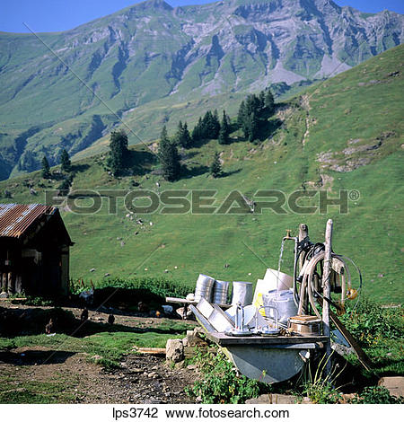 Stock Photo of 34 France French Alps Savoie Milk And Cow Cheese.