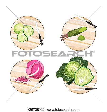 Clipart of Brussels Sprout, Savoy Cabbage, Purple Cabbage and.